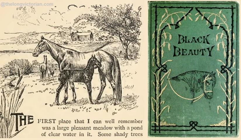 Black Beauty illustration 1894